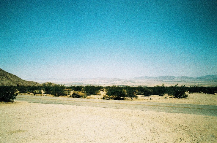 Joshua Tree National Park | Leica MP | Leica Summicron-M 35mm f/2 ASPH. | Lomography XPro 200 ISO