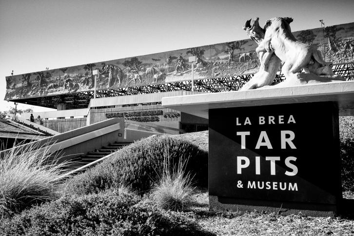 La Brea Tar Pits | Leica M Monochrom (Typ 246) | Leica Summicron-M 35mm f/2 ASPH. | 1/60s | f5.6 | ISO 320